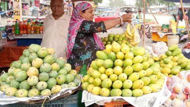 Photo of জেনে নিন বিভিন্ন জাতের আম চেনার উপায়