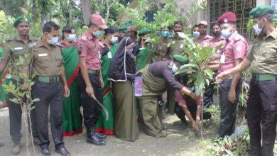 Photo of ভাঙ্গায় মুজিব শতবর্ষ উপলক্ষ্যে আনসার-ভিডিপির বৃক্ষরোপন অভিযান