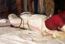 Photo of ভাঙ্গায় বিলের পানি থেকে মহিলার বস্তাবন্দী লাশ উদ্বার