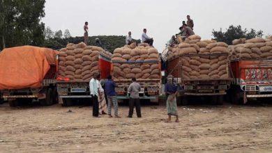 Photo of সীমান্ত থেকে ফেরত গেল ৫০০ ট্রাক ভারতীয় পেঁয়াজ